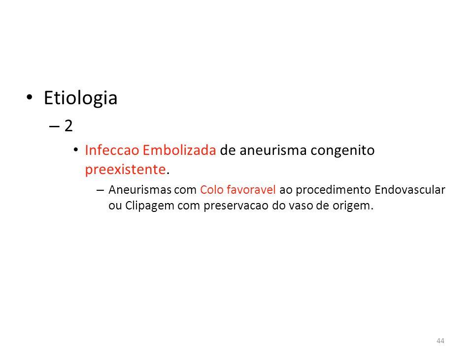 Etiologia 2 Infeccao Embolizada de aneurisma congenito preexistente.