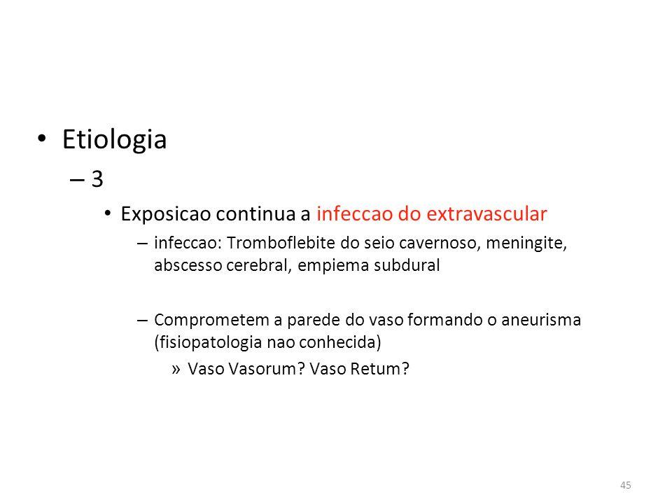 Etiologia 3 Exposicao continua a infeccao do extravascular