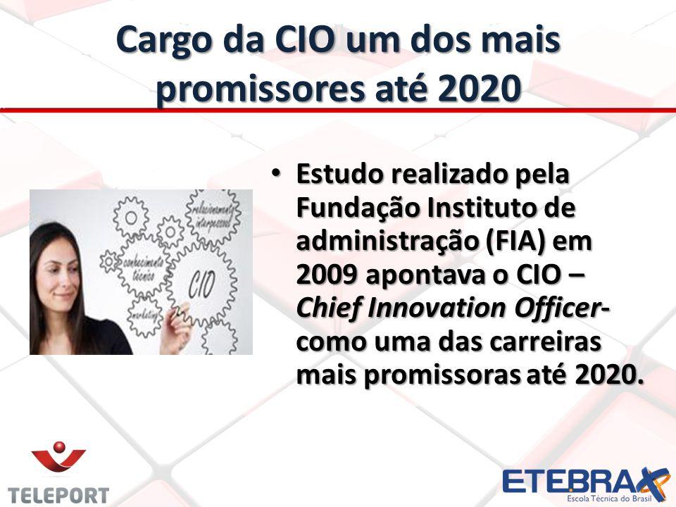 Cargo da CIO um dos mais promissores até 2020