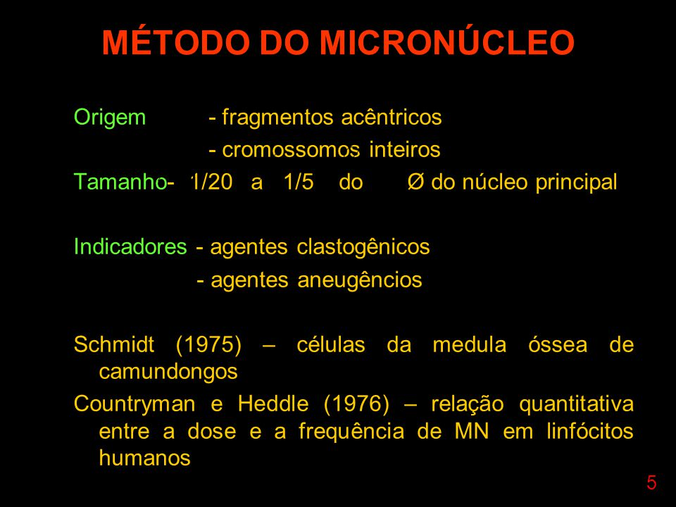 MÉTODO DO MICRONÚCLEO Origem - fragmentos acêntricos