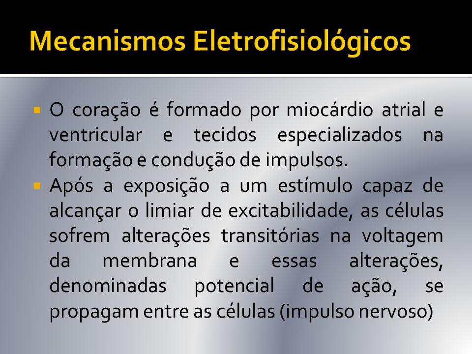 Mecanismos Eletrofisiológicos