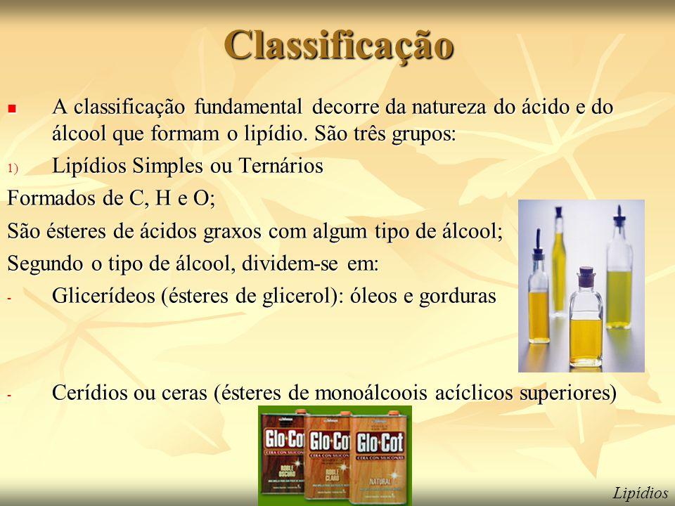 Classificação A classificação fundamental decorre da natureza do ácido e do álcool que formam o lipídio. São três grupos:
