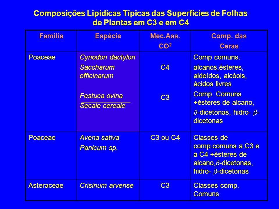 Composições Lipídicas Típicas das Superfícies de Folhas de Plantas em C3 e em C4