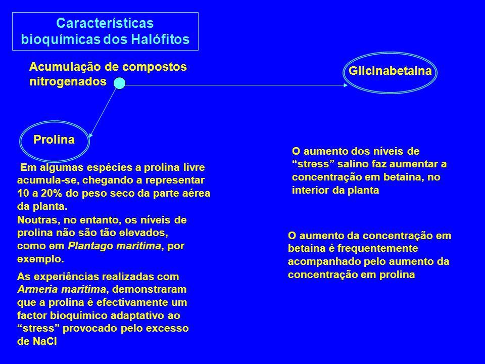 Características bioquímicas dos Halófitos