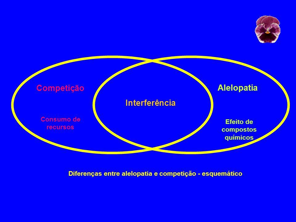 Competição Interferência