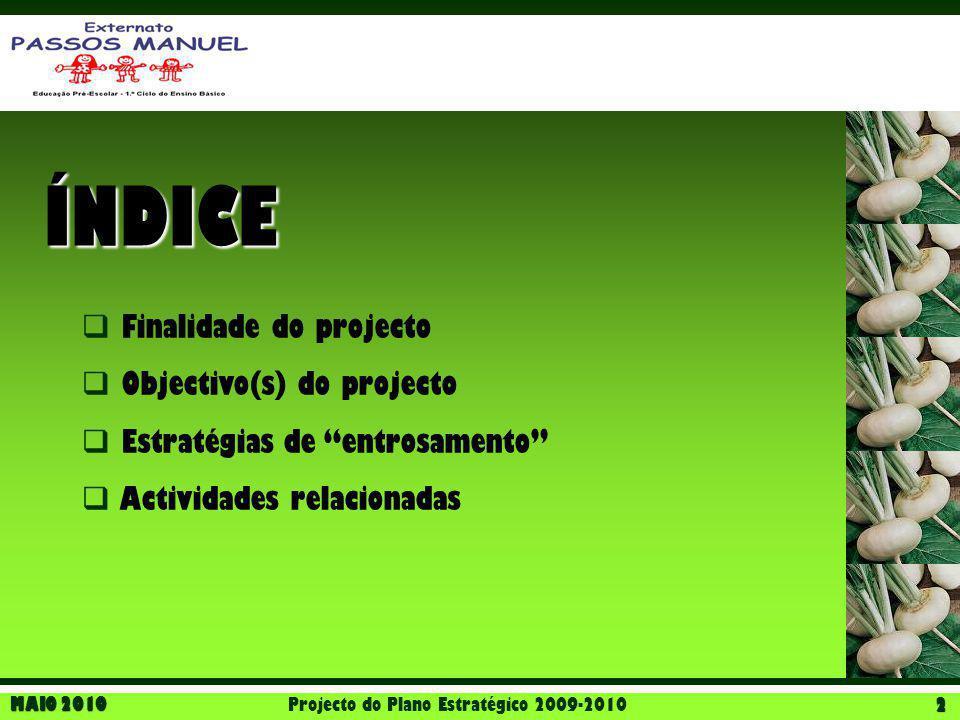 Projecto do Plano Estratégico 2009-2010
