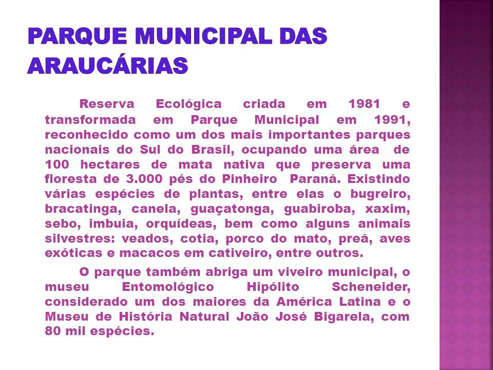 Parque Municipal das Araucárias