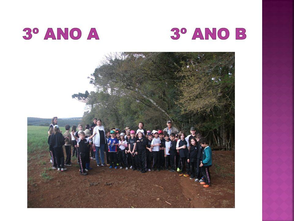 3º ano A 3º ano B