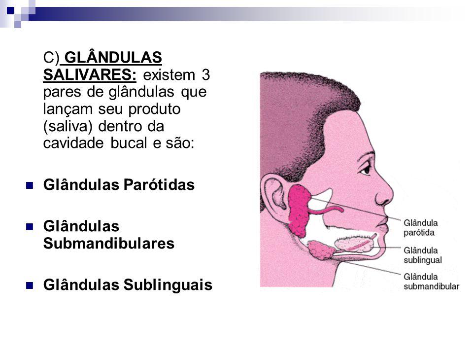 C) GLÂNDULAS SALIVARES: existem 3 pares de glândulas que lançam seu produto (saliva) dentro da cavidade bucal e são:
