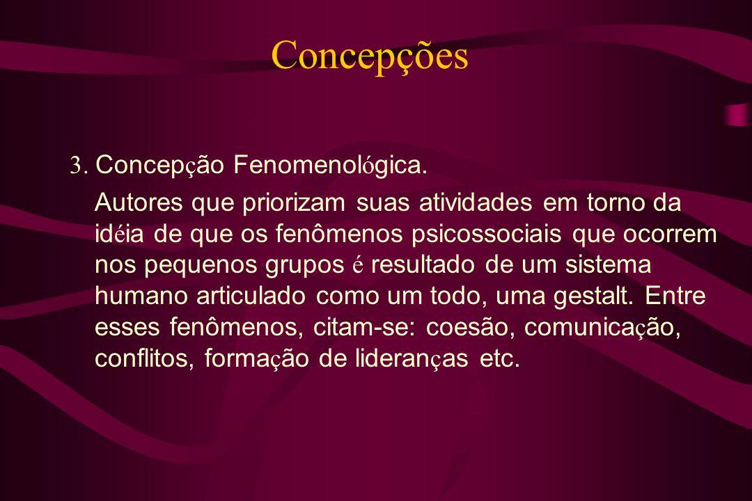 Concepções 3. Concepção Fenomenológica.