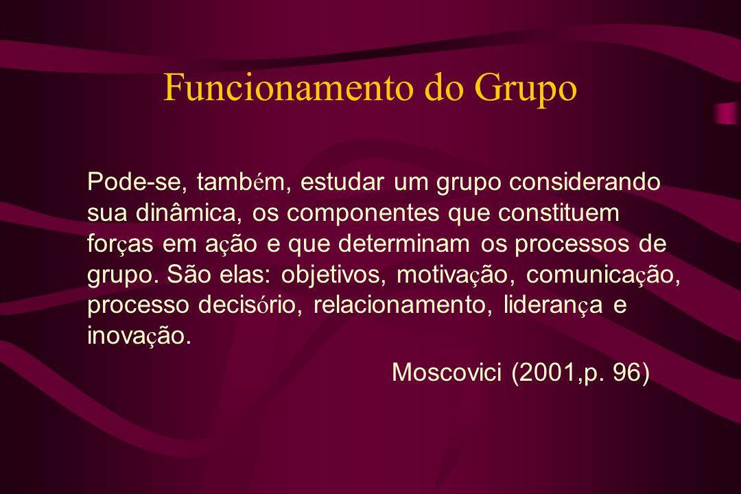 Funcionamento do Grupo
