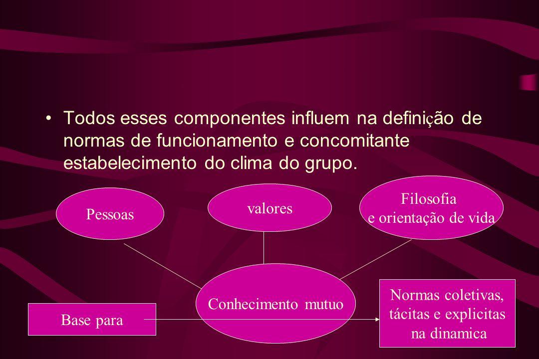 Todos esses componentes influem na definição de normas de funcionamento e concomitante estabelecimento do clima do grupo.