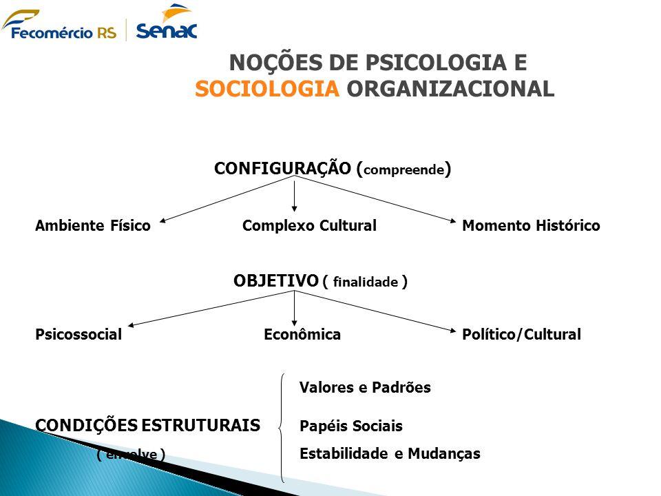 SOCIOLOGIA ORGANIZACIONAL CONFIGURAÇÃO (compreende)
