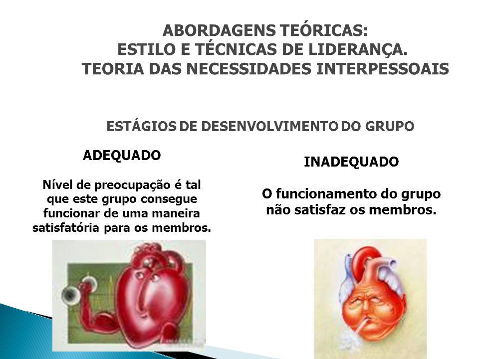 ABORDAGENS TEÓRICAS: TEORIA DAS NECESSIDADES INTERPESSOAIS