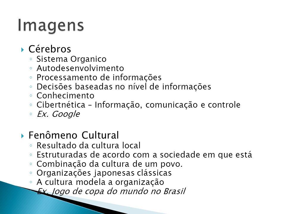 Imagens Cérebros Fenômeno Cultural Sistema Organico