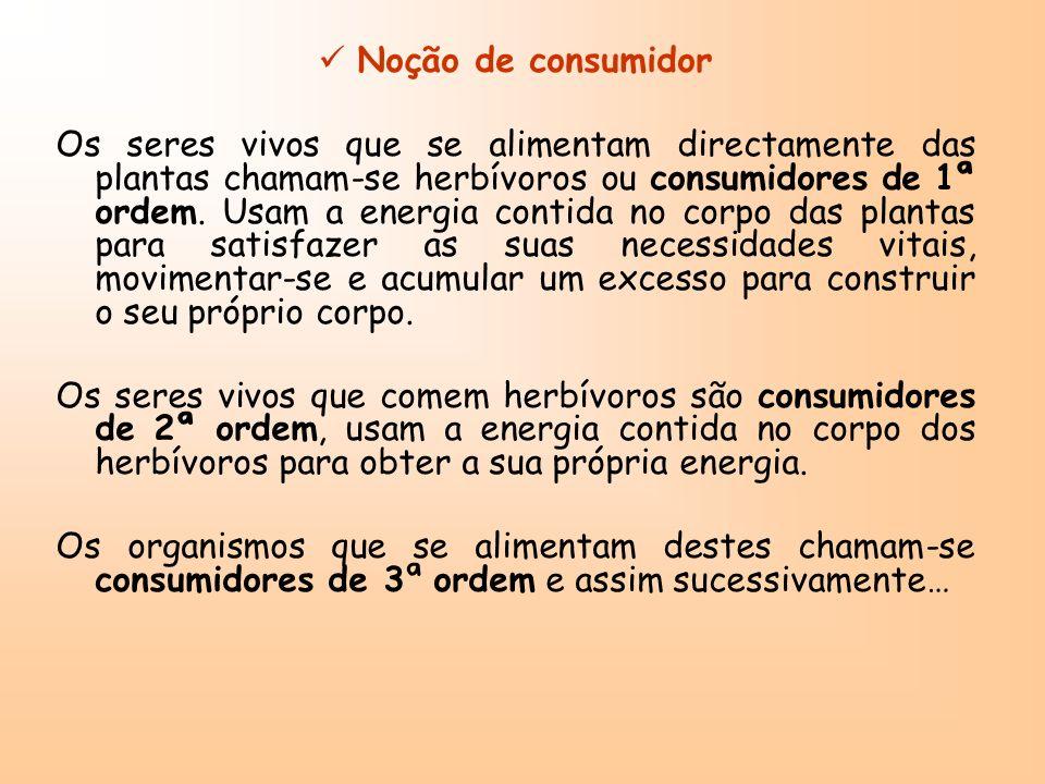 Noção de consumidor