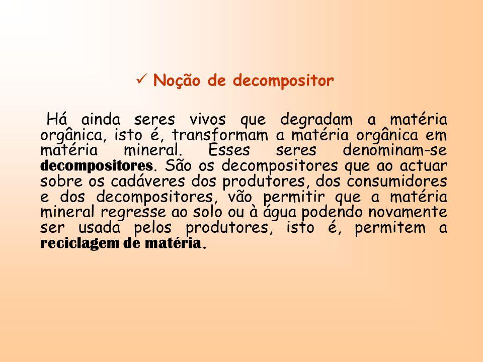 Noção de decompositor