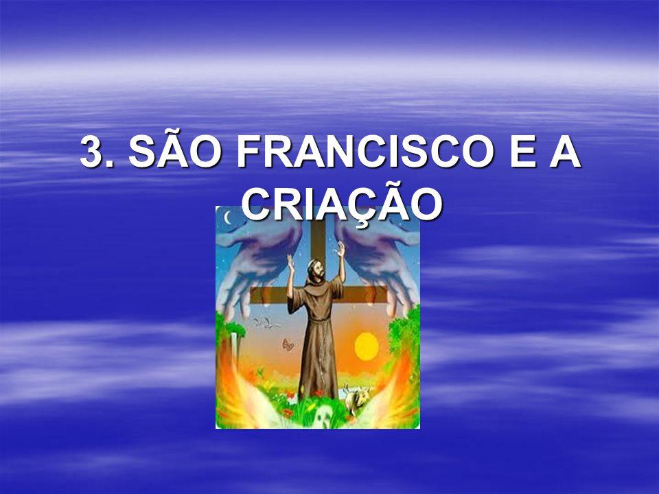 3. SÃO FRANCISCO E A CRIAÇÃO
