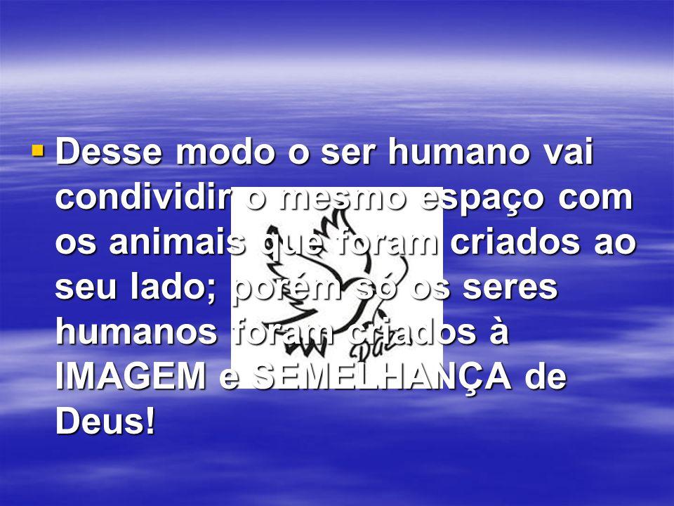 Desse modo o ser humano vai condividir o mesmo espaço com os animais que foram criados ao seu lado; porém só os seres humanos foram criados à IMAGEM e SEMELHANÇA de Deus!