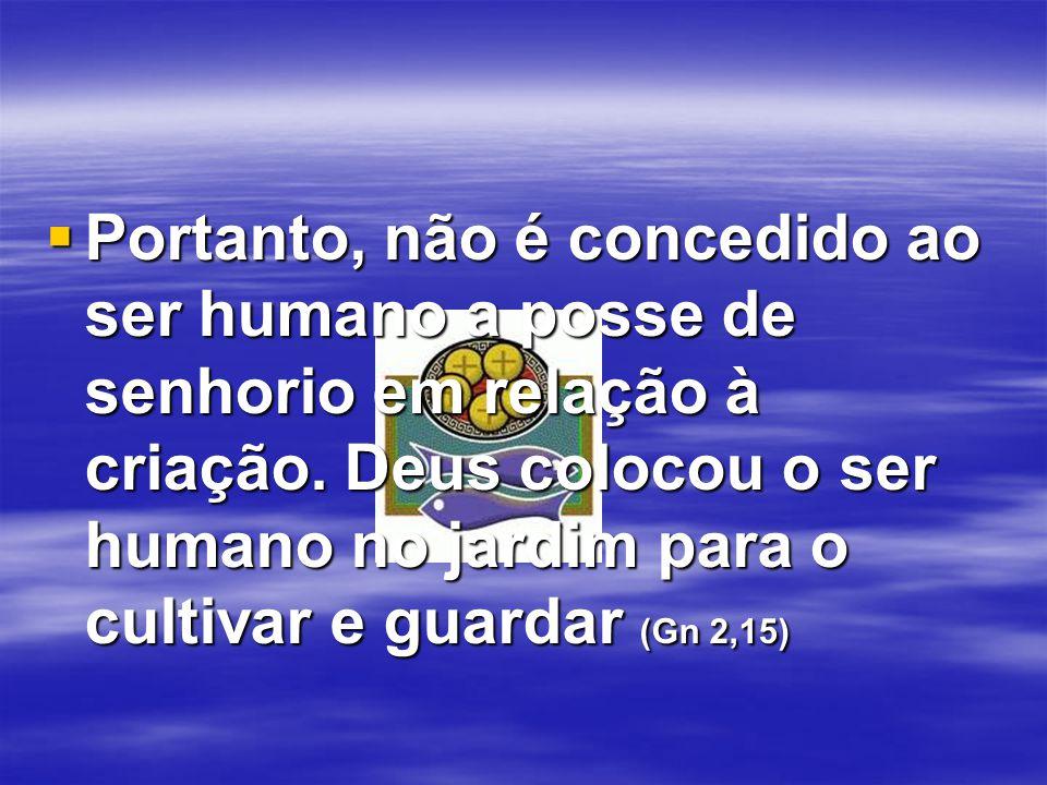 Portanto, não é concedido ao ser humano a posse de senhorio em relação à criação.