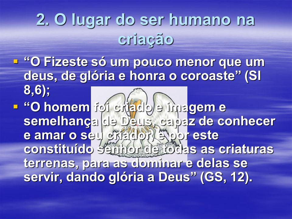 2. O lugar do ser humano na criação