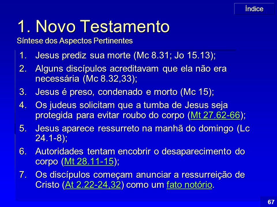 1. Novo Testamento Síntese dos Aspectos Pertinentes