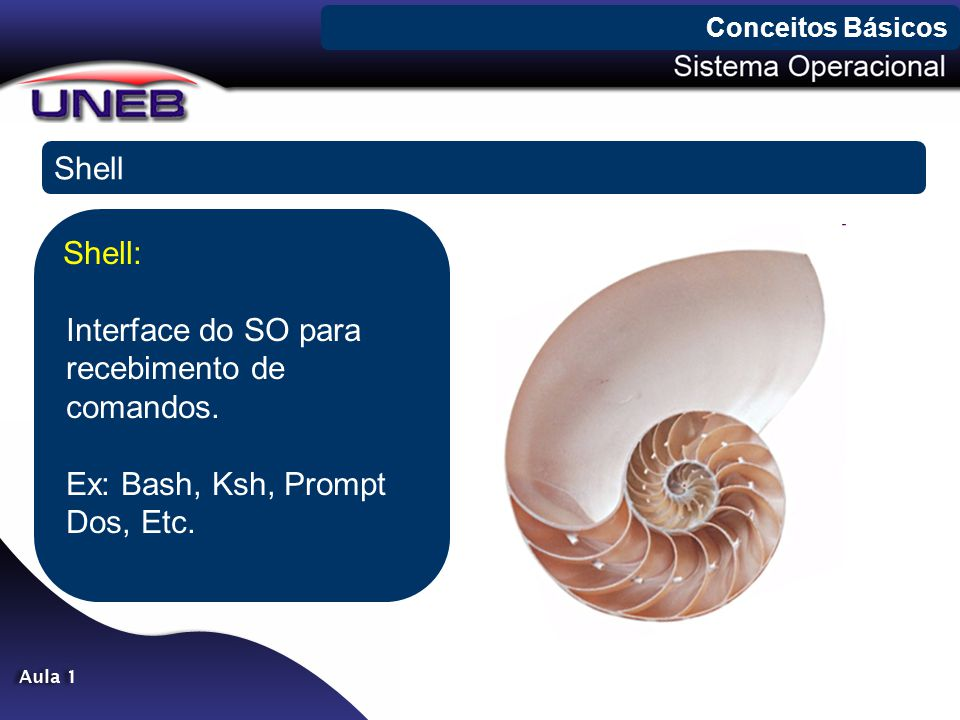 Conceitos Básicos Shell. Shell: Interface do SO para recebimento de comandos.