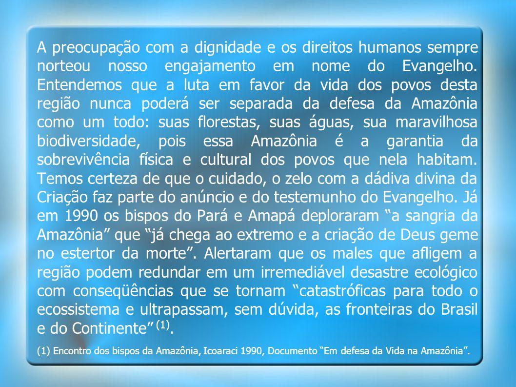 A preocupação com a dignidade e os direitos humanos sempre norteou nosso engajamento em nome do Evangelho. Entendemos que a luta em favor da vida dos povos desta região nunca poderá ser separada da defesa da Amazônia como um todo: suas florestas, suas águas, sua maravilhosa biodiversidade, pois essa Amazônia é a garantia da sobrevivência física e cultural dos povos que nela habitam. Temos certeza de que o cuidado, o zelo com a dádiva divina da Criação faz parte do anúncio e do testemunho do Evangelho. Já em 1990 os bispos do Pará e Amapá deploraram a sangria da Amazônia que já chega ao extremo e a criação de Deus geme no estertor da morte . Alertaram que os males que afligem a região podem redundar em um irremediável desastre ecológico com conseqüências que se tornam catastróficas para todo o ecossistema e ultrapassam, sem dúvida, as fronteiras do Brasil e do Continente (1).