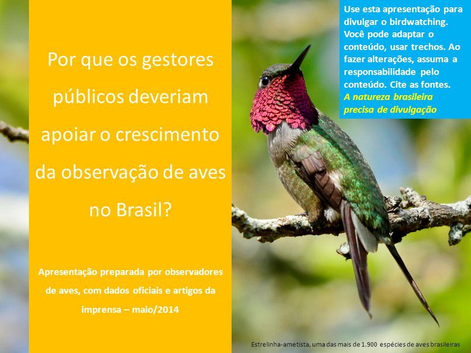 Por que os gestores públicos deveriam apoiar o crescimento da observação de aves no Brasil