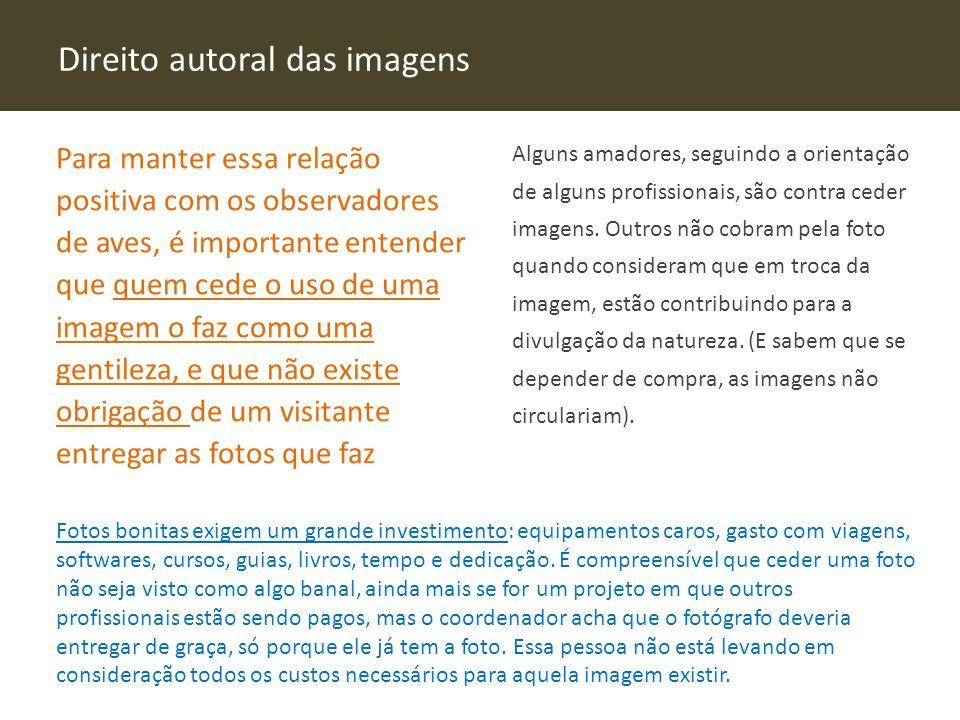 Direito autoral das imagens