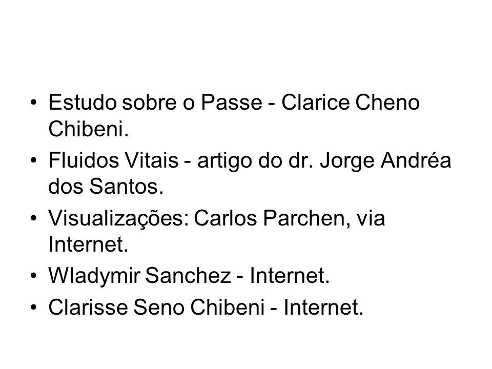 Estudo sobre o Passe - Clarice Cheno Chibeni.