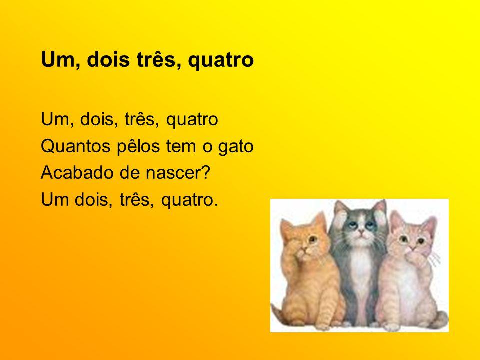 Um, dois três, quatro Um, dois, três, quatro Quantos pêlos tem o gato