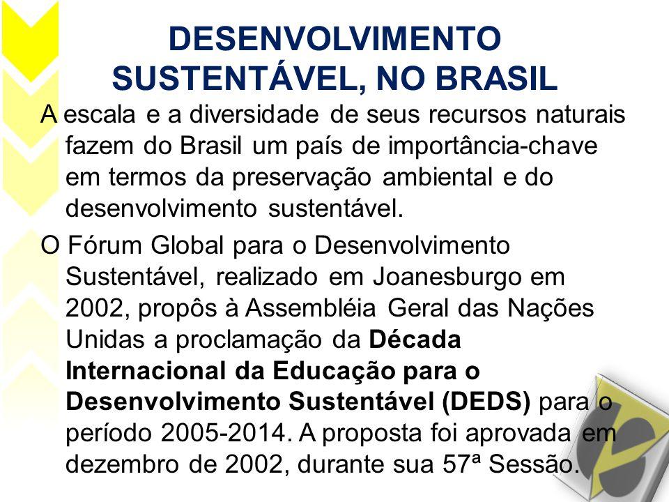 DESENVOLVIMENTO SUSTENTÁVEL, NO BRASIL