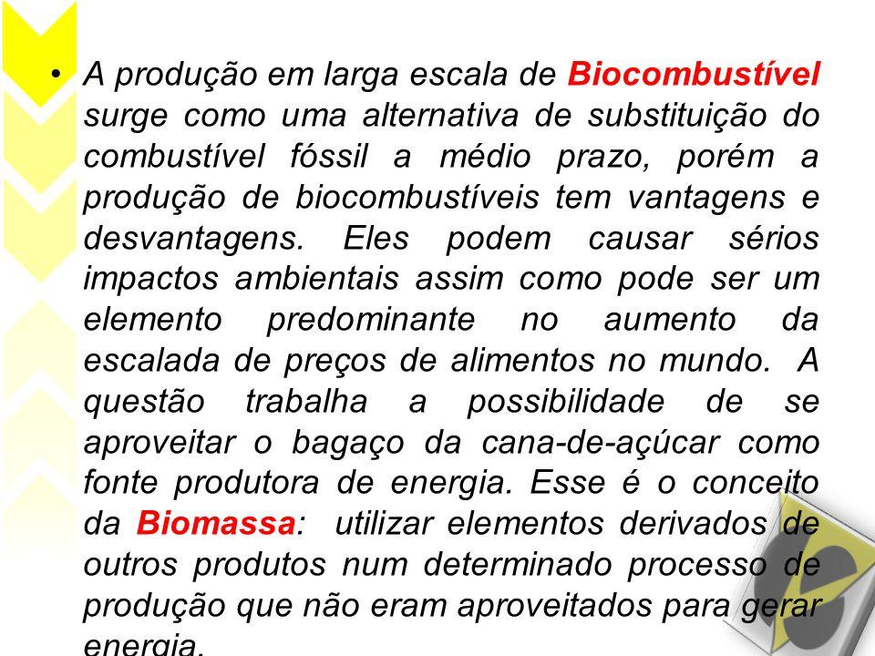A produção em larga escala de Biocombustível surge como uma alternativa de substituição do combustível fóssil a médio prazo, porém a produção de biocombustíveis tem vantagens e desvantagens.