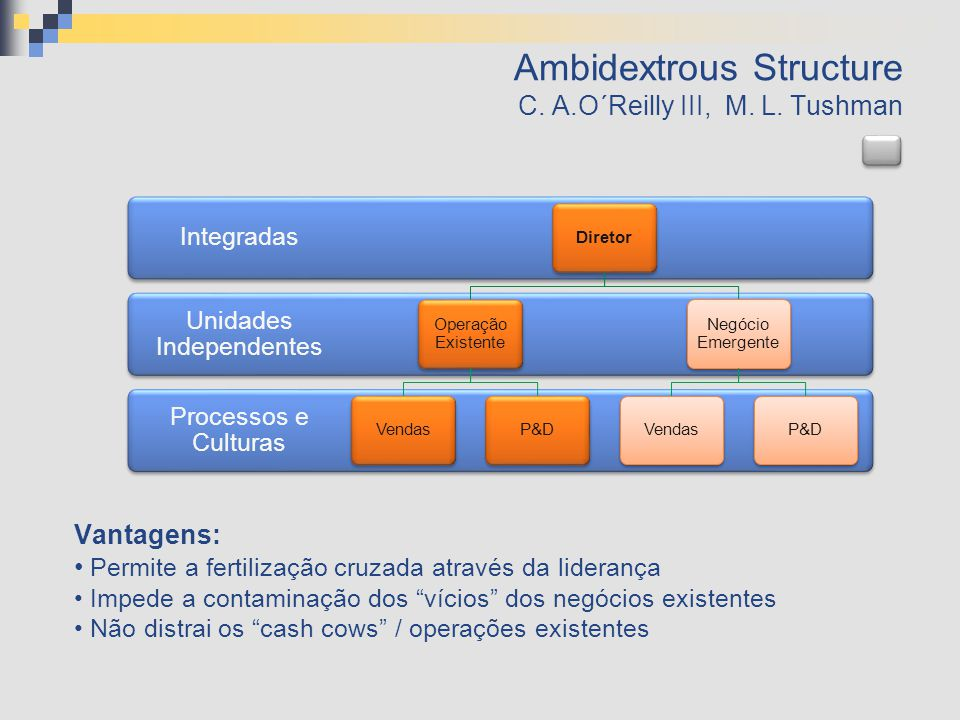Ambidextrous Structure C. A.O´Reilly III, M. L. Tushman