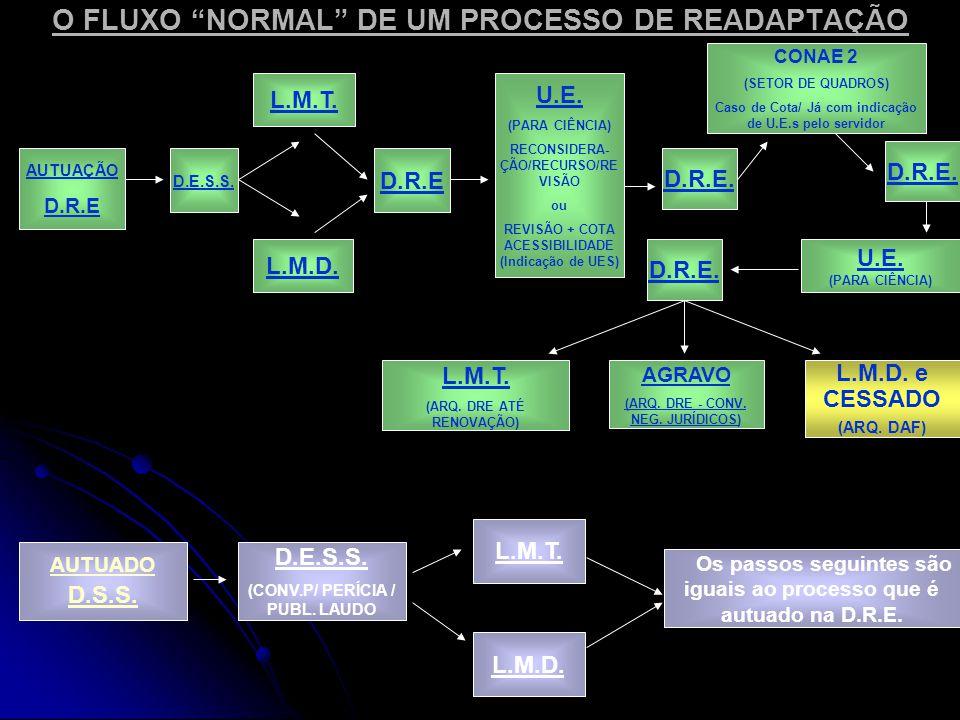O FLUXO NORMAL DE UM PROCESSO DE READAPTAÇÃO