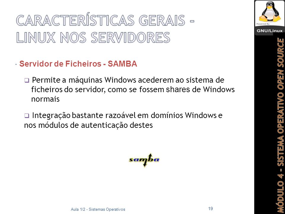 ficheiros do servidor, como se fossem shares de Windows normais