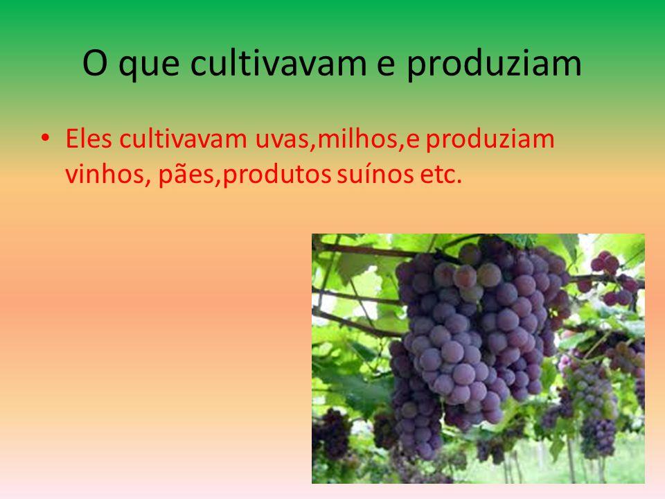 O que cultivavam e produziam
