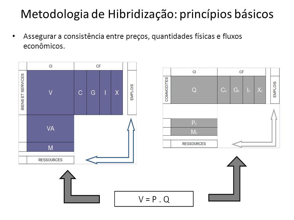 Metodologia de Hibridização: princípios básicos