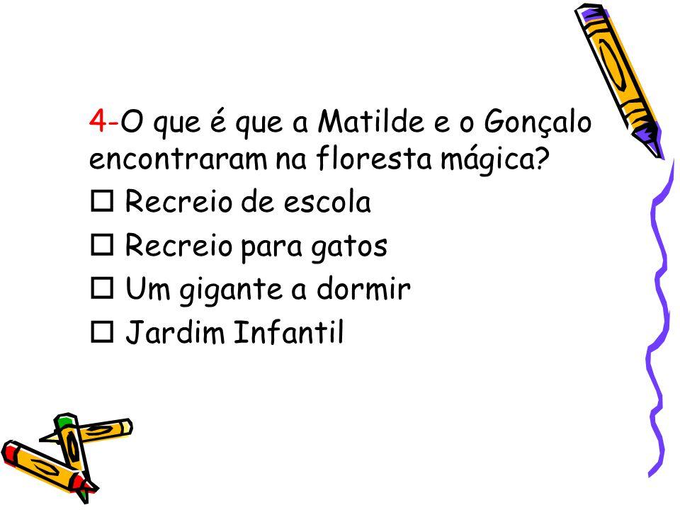 4-O que é que a Matilde e o Gonçalo encontraram na floresta mágica