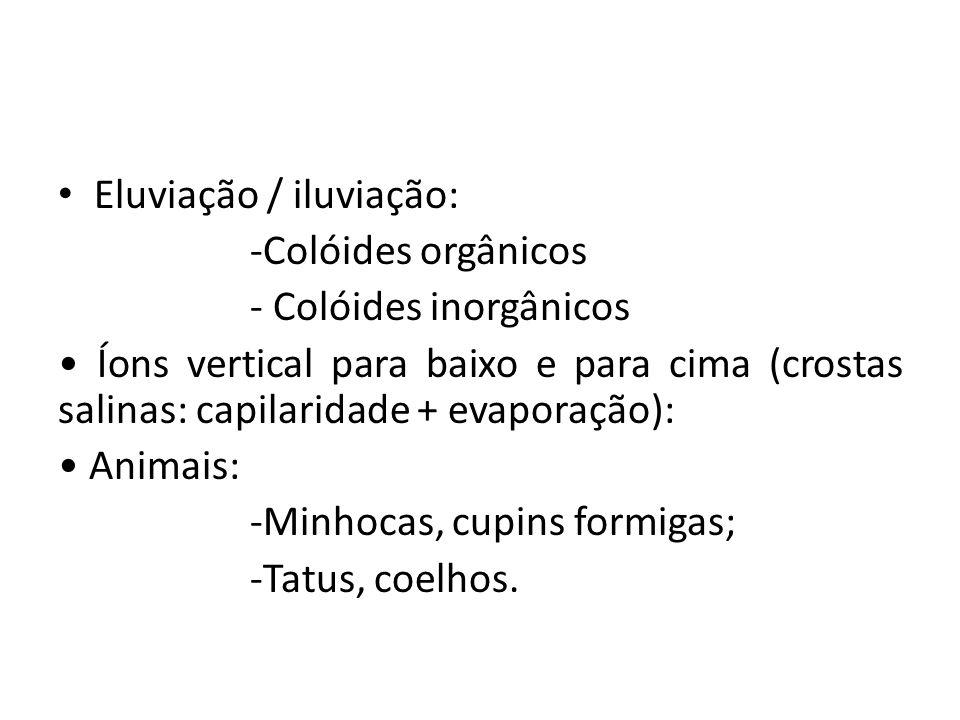 Eluviação / iluviação: