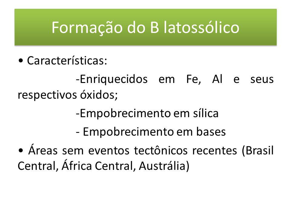 Formação do B latossólico