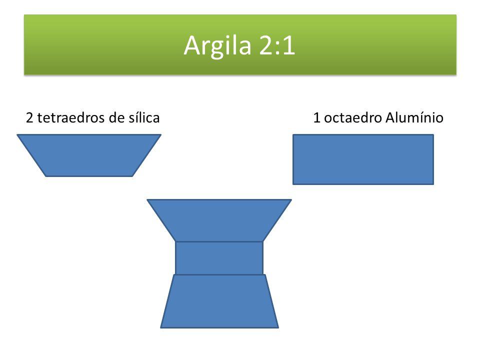 Argila 2:1 2 tetraedros de sílica 1 octaedro Alumínio