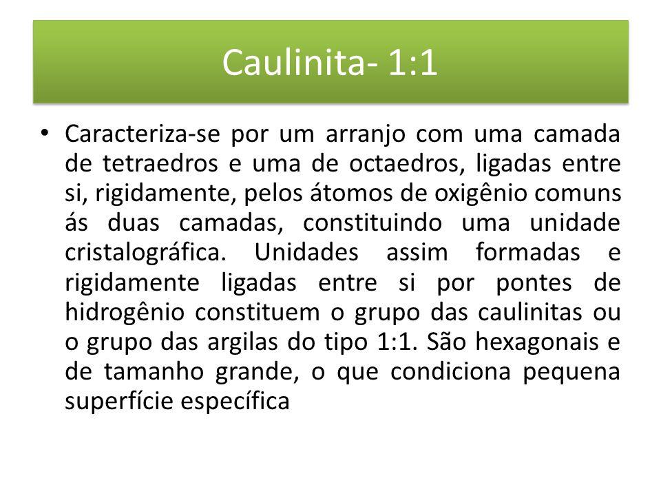 Caulinita- 1:1