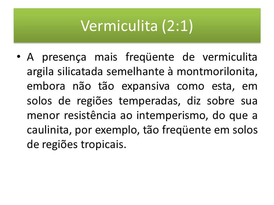 Vermiculita (2:1)