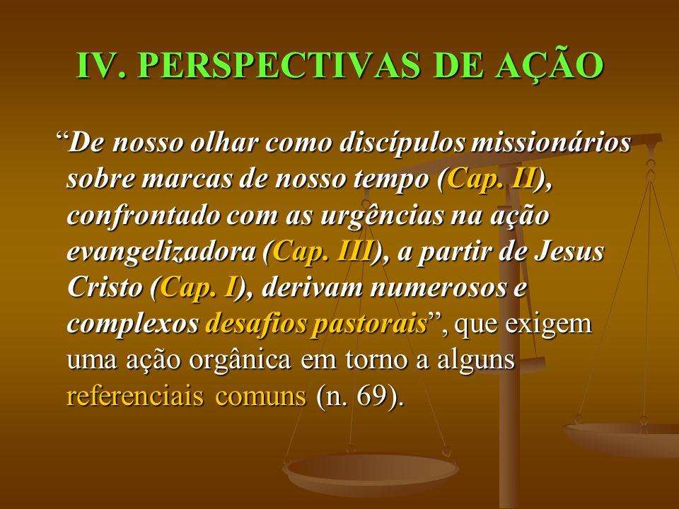 IV. PERSPECTIVAS DE AÇÃO