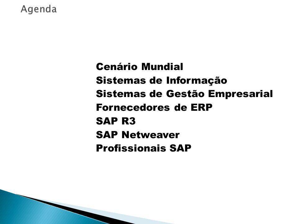 Agenda Cenário Mundial Sistemas de Informação Sistemas de Gestão Empresarial Fornecedores de ERP SAP R3 SAP Netweaver Profissionais SAP