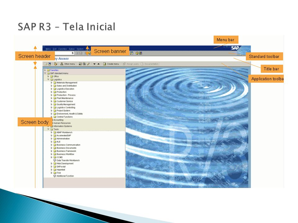 SAP R3 – Tela Inicial Pain Points of customers that have an SAP ERP system in place