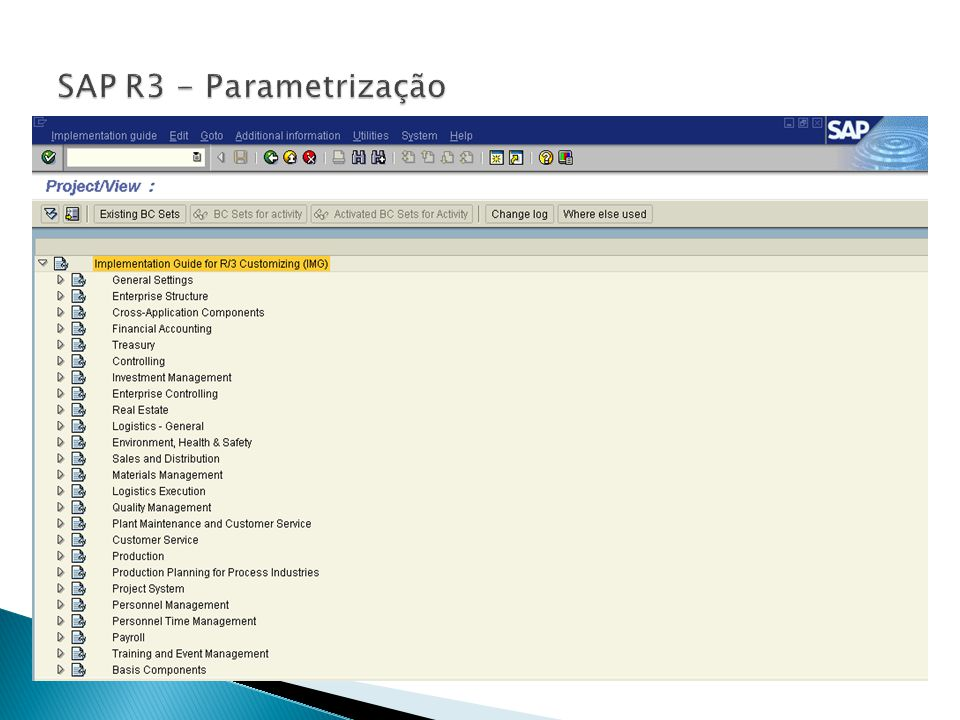 SAP R3 - Parametrização Pain Points of customers that have an SAP ERP system in place