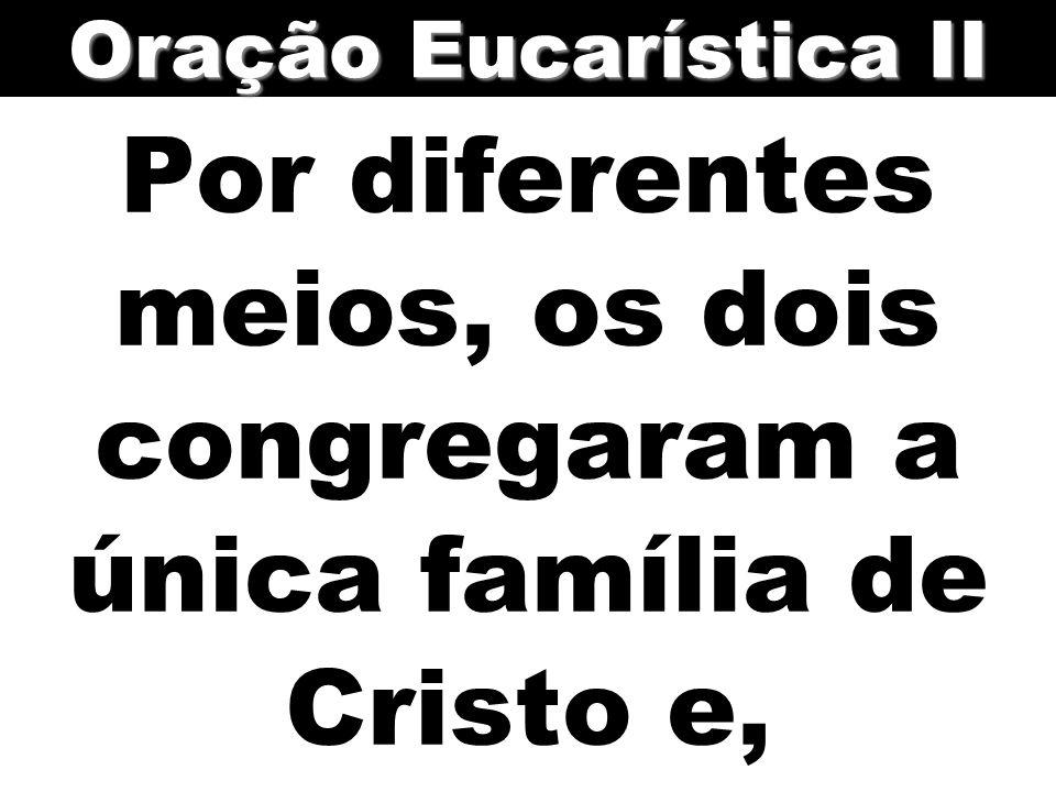 Por diferentes meios, os dois congregaram a única família de Cristo e,